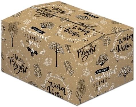 Kerstpakketdoos 490x390x200mm Classic kraft G200 met handgrepen