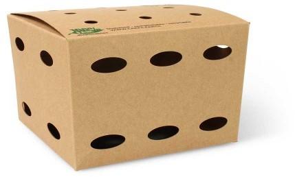 Frietbox medium 145x145x140mm 100% Fair