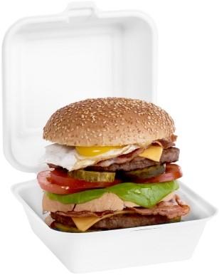 Suikerriet hamburgerbox 15,5x15,5x7,7cm